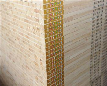 E1级东北杨-收米直播app下载木工板